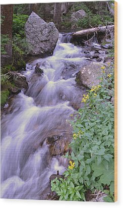 Wood Print featuring the photograph Silky Stream by Zawhaus Photography