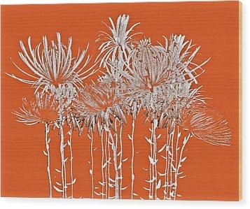 Silver Stems Wood Print by James Mancini Heath