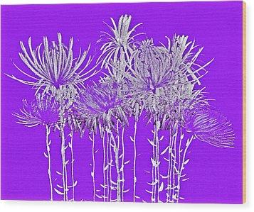 Silver Stems On Purple Wood Print by James Mancini Heath