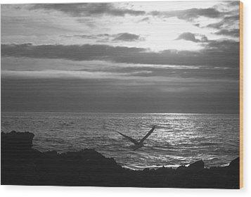 Sailing Wood Print by Lora Lee Chapman