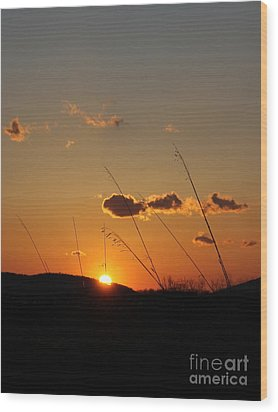Simple Places Wood Print by Everett Houser