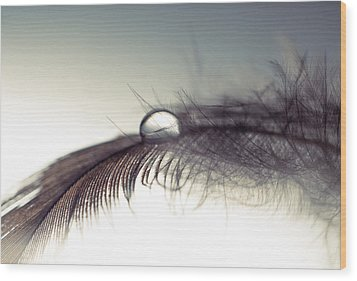 Sinergy Wood Print by Ivan Vukelic