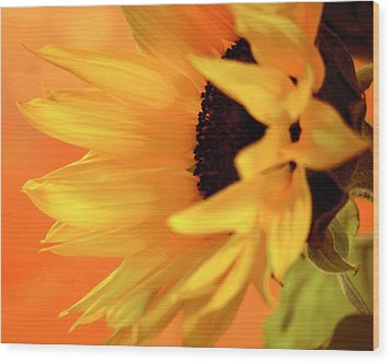 Wood Print featuring the photograph Single Sunflower by James Bethanis