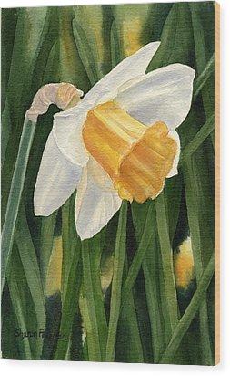 Single Yellow Daffodil Wood Print by Sharon Freeman