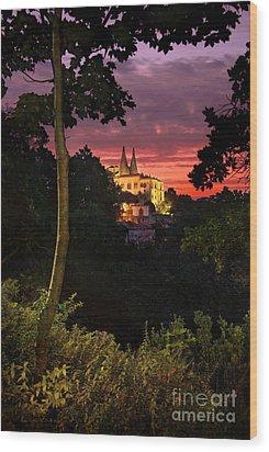 Sintra Palace Wood Print by Carlos Caetano