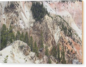 Wood Print featuring the photograph Sit For A Spell At Grand Canyon In Yellowstone by Living Color Photography Lorraine Lynch