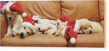 Six Puppies Sleep On Sofa, Some Wear Santa Hats Wood Print by Karina Santos