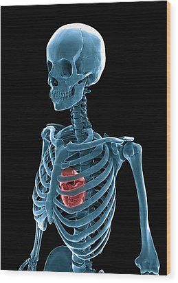Skeleton And Heart, Artwork Wood Print by Andrzej Wojcicki