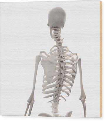 Skeleton, Artwork Wood Print by Andrzej Wojcicki
