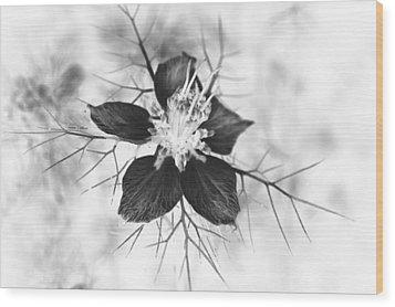 Skeleton Flower Wood Print by Michael Ambrose