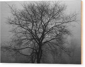 Skeletons In The Fog Wood Print