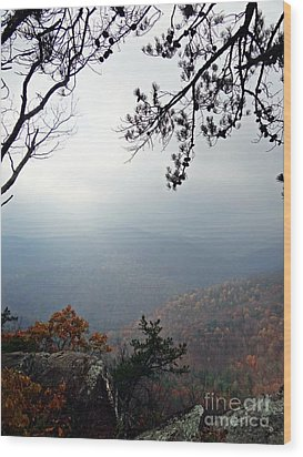 Skyline 3  Shenandoah National Park Wood Print