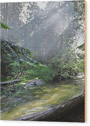 Slanting Sunlight On River Wood Print by Kirsten Giving