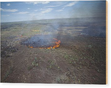 Slash And Burn Agriculture Wood Print by Alexis Rosenfeld