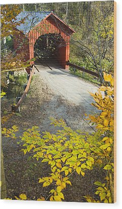 Slaughter House Bridge And Fall Colors Wood Print by James Forte