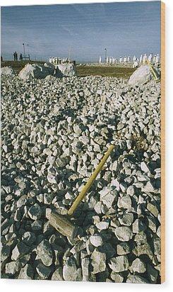 Sledgehammer In A Field Of Rock Wood Print by Bill Curtsinger