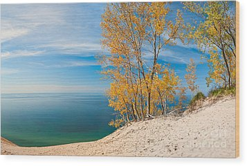 Sleeping Bear Dunes Vista 001 Wood Print