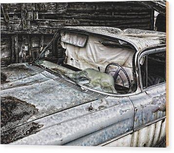 Slimy Sue  Wood Print by Jerry Cordeiro