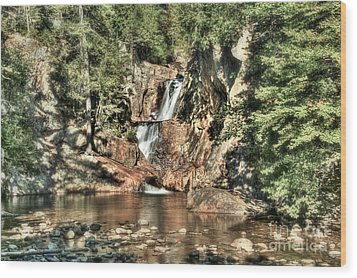 Small Falls Wood Print by Brenda Giasson
