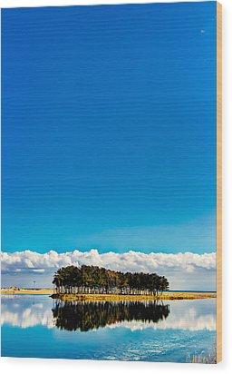Small Island Wood Print by Tokism