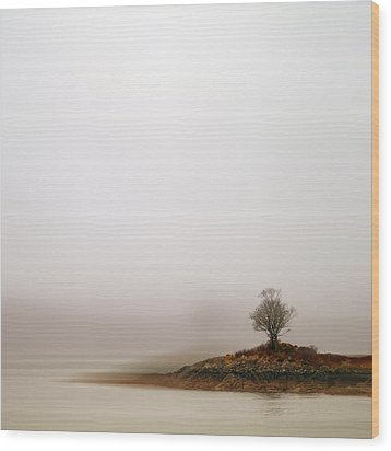 Small Island With Lone Tree Wood Print by Andrew Lockie