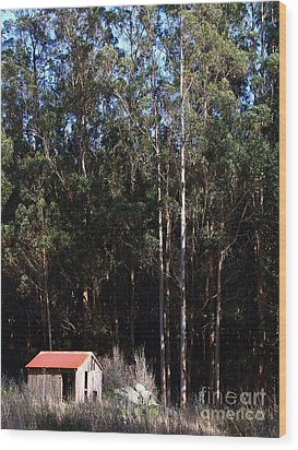 Small Shack Near The Town Of Bodega . 7d12422 Wood Print by Wingsdomain Art and Photography