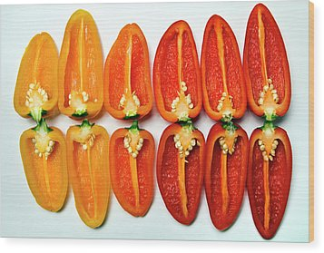 Small Sweet Peppers Wood Print by Image by Catherine MacBride