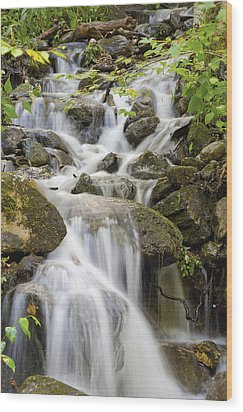 Small Waterfalls And Brook West Bolton Wood Print by David Chapman