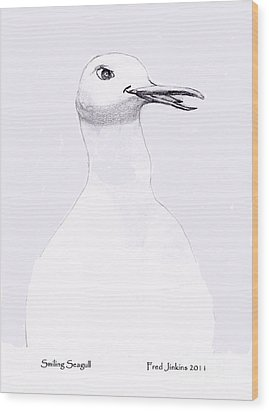 Smiling Seagull Wood Print by Fred Jinkins