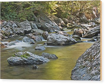 Smoky Mountain Streams II Wood Print