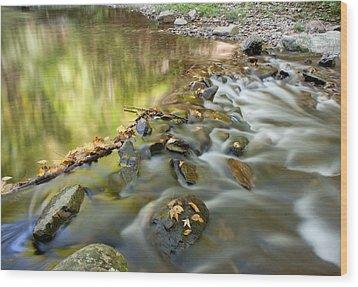 Smoky Mountain Streams Iv Wood Print