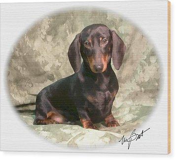 Smooth Dachshund Doxie Pup Wood Print by Maxine Bochnia