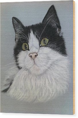 Smudge  A Pastel Portrait Wood Print by Hillary Rose