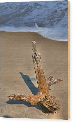 Snag And Surf II Wood Print by Steven Ainsworth