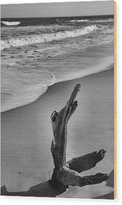 Snag And Surf Wood Print by Steven Ainsworth