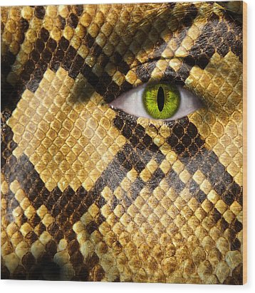 Snake Eye Wood Print by Semmick Photo