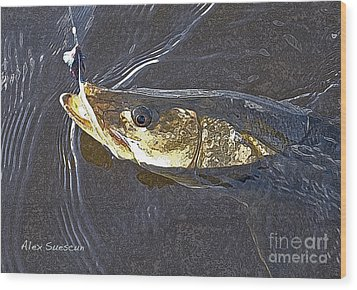 Snook Slider Wood Print by Alex Suescun
