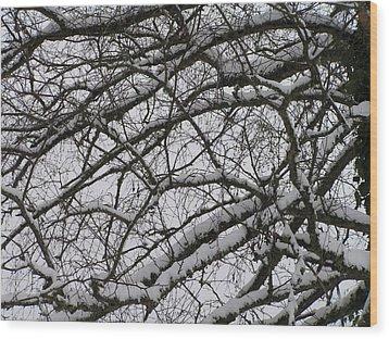 Snow Against A Grey Sky Wood Print