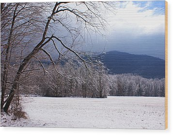 Wood Print featuring the photograph Snow And Ice by Paul Mashburn