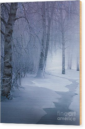 Snow Brook Wood Print by Robert Foster