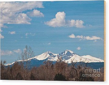 Snow-capped Mountain Majesties Wood Print by Harry Strharsky