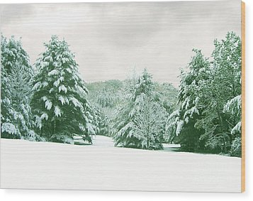 Wood Print featuring the photograph Snow Covered Countryside by Michael Waters
