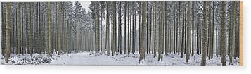 Snow-covered Forest In Winter Wood Print by Hans-Peter Merten