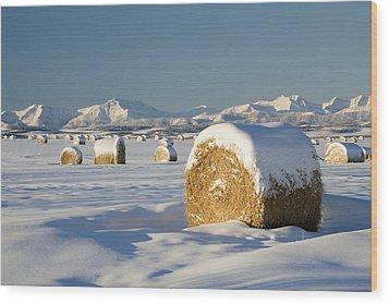 Snow-covered Hay Bales Okotoks Wood Print by Michael Interisano