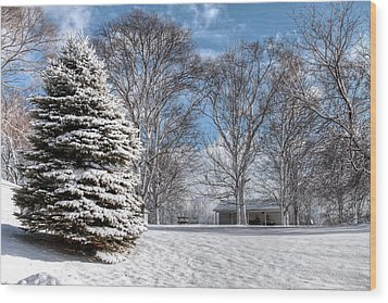 Snow Covered Pine Wood Print by Richard Gregurich