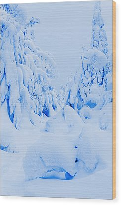 Snow-covered To Vallee Des Fantomes Wood Print by Yves Marcoux