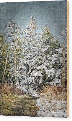 Snow Covered Trees Wood Print by Cheryl Davis