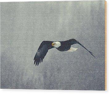 Snow Flight Wood Print by Myrna Bradshaw