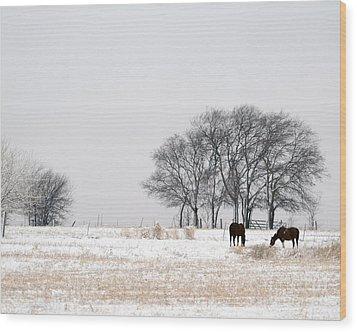 Snow Horses Wood Print