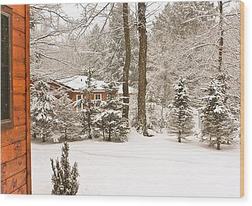 Wood Print featuring the photograph Snow In The Adirondacks by Ann Murphy